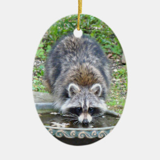 The Watering Hole - Racoon Ceramic Oval Decoration