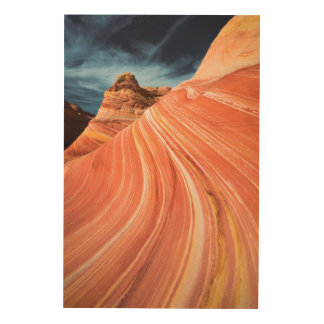 The wave, vermilion cliffs, Arizona Wood Wall Decor