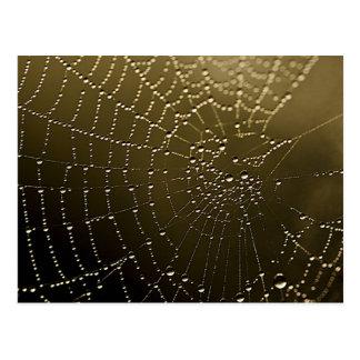 The Web Postcard
