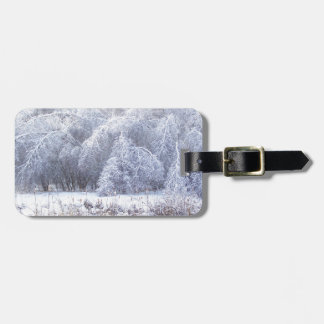 The Weight of Ice Luggage Tag