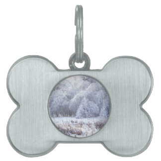 The Weight of Ice Pet Tag