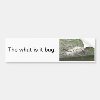 The what is it bug bumper sticker