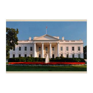 The White House, Washington D.C., USA Acrylic Wall Art