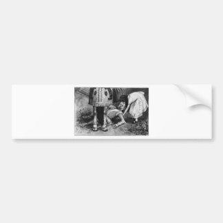 The White Knight Falls Bumper Sticker