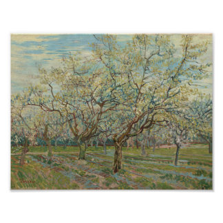 The White Orchard Arles, April 1888 Vincent van Go Poster