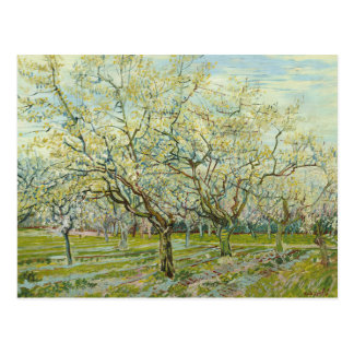 The white orchard by Vincent Van Gogh Postcard