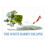 The White Rabbit escapes! Postcard