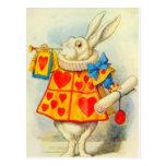 The White Rabbit Full Colour
