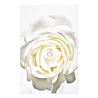 The White Rose of Love_ Stationery