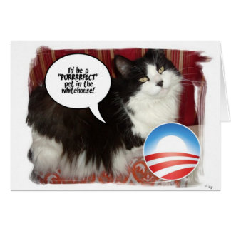 The Whitehouse Pet Kitty Cat Greeting Card