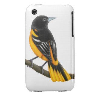 The Wild Baltimore Oriole Bird iPhone 3 Case