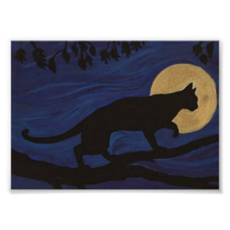 The Wild Cat At Night by Felinity Poster