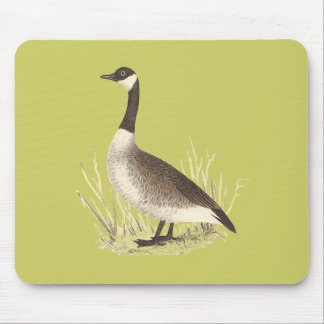 The Wild Goose(Anser canadensis) Mouse Pad