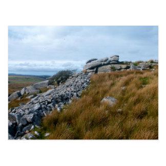 The Wild Moors Bodmin Moor Cornwall England Postcard