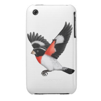 The Wild Rose Breasted Grosbeak Bird iPhone 3 Covers