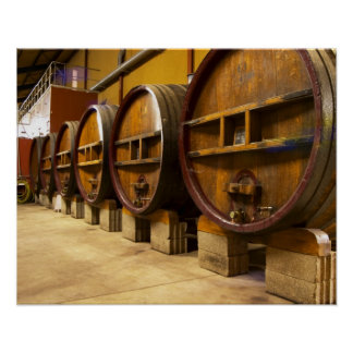 The wine cellar winery with big old wooden casks poster