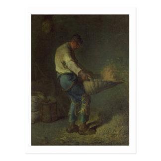 The Winnower (board) Postcard