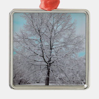 The Winter Oak Ornament