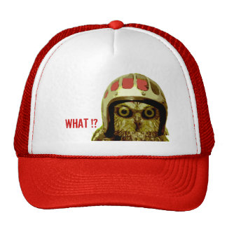 The Wise Motorcycle Owl Cap