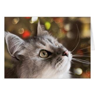 The Wonder of Christmas (Card) Card