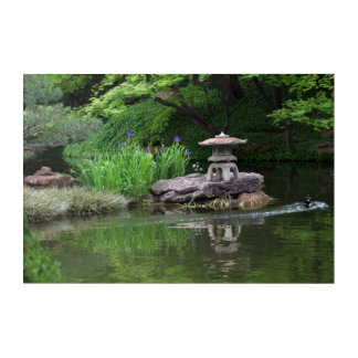 The Wood Drake in the Japanese Garden Acrylic Wall Art
