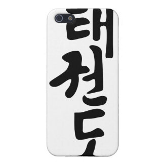 The Word Taekwondo In Korean Lettering iPhone 5/5S Cover