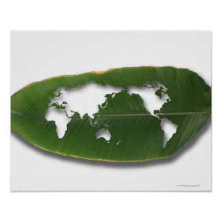 The worm-eaten leaf world map print