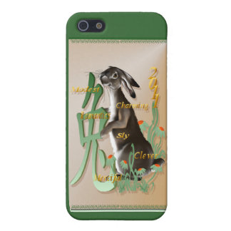 The Year Of The Rabbit 441__P iPhone 5/5S Covers