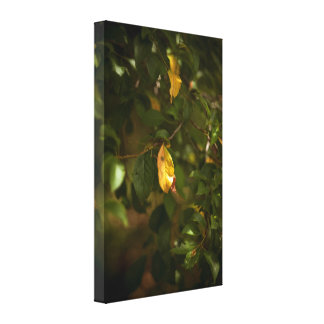 The yellow leaf canvas print