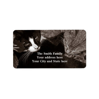 The Yin Yang Cats Address Label