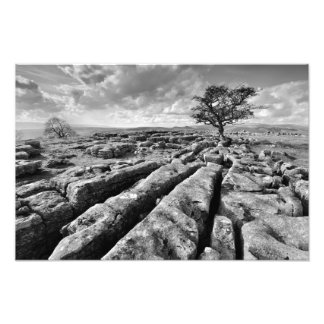 The Yorkshire Dales - Limestone Country Photograph