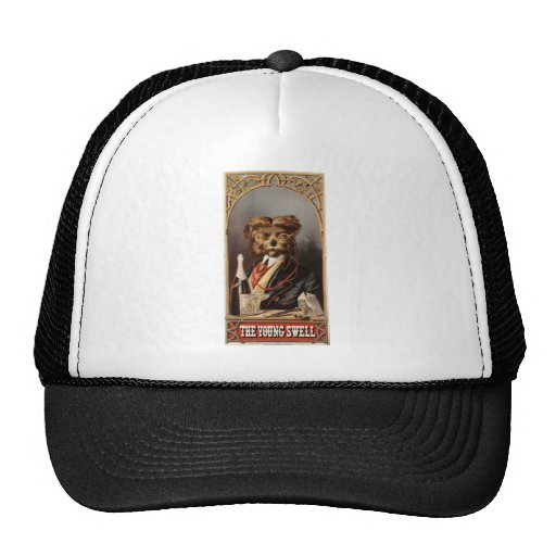 The Young Swell tobacco Hat