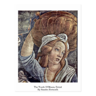 The Youth Of Moses, Detail By Sandro Botticelli Postcard