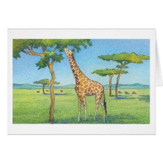 The Zebra Note Card