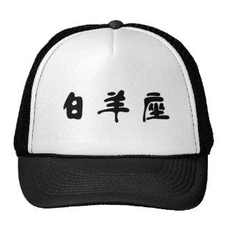 The Zodiac - Aries Hat