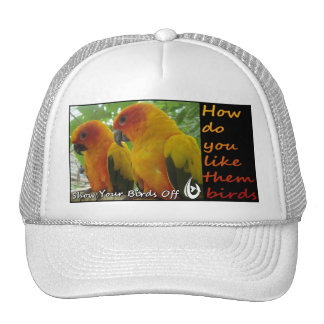 Them Birds Cap