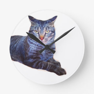 Theodore Glares Funny Cat Round Wall Clock