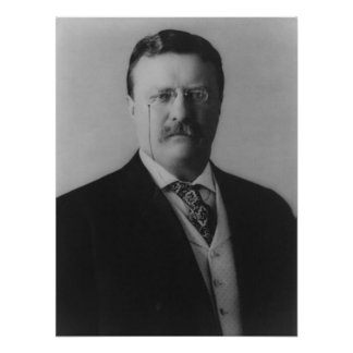 Theodore Roosevelt Portrait Poster