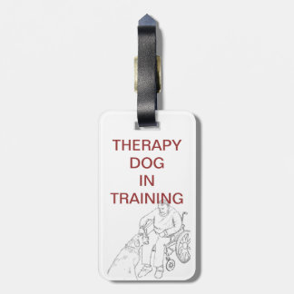 Therapy Dog in Training tag
