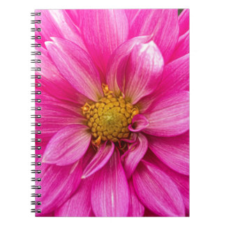 There Is Peace Spiral Notebook