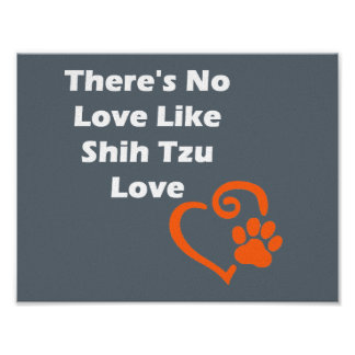 There's No Love Like Shih Tzu Love Poster
