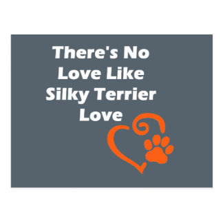 There's No Love Like Silky Terrier Love Postcard