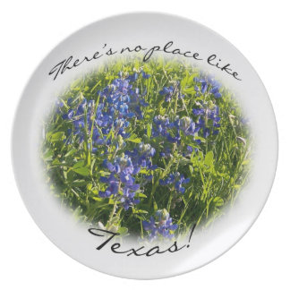 There's No Place Like Texas Decorative Plate
