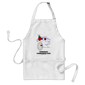 Thermogenesis In Brown Adipose Tissue Aprons