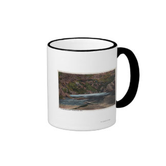 Thermopolis WY - Big Horn Hot Springs View Coffee Mugs