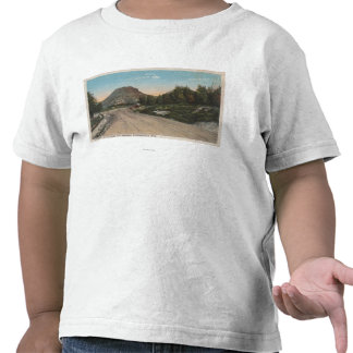 Thermopolis WY - View of Big Horn Driveway T Shirt