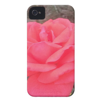 These items are fun and creative they are awesome Case-Mate iPhone 4 case