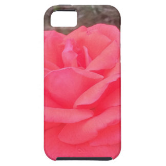 These items are fun and creative they are awesome iPhone 5 covers