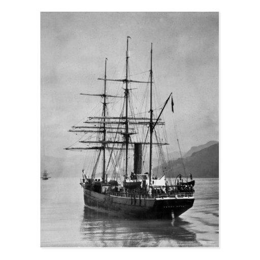 TheTerra Nova sailed by Scott Post Cards