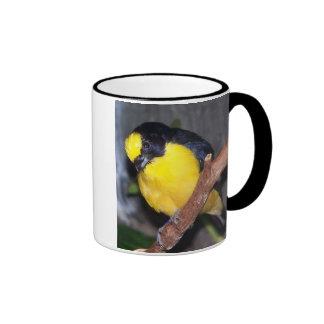 thick billed euphonia2 coffee mug